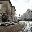 snow08feb (6)